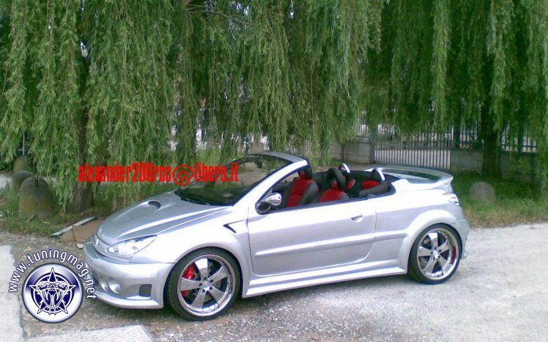 Peugeot 206Rcc SilverStar