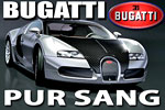 Bugatti EB 16.4 Veyron Pur sang.
